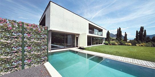 Pareti verdi architettura
